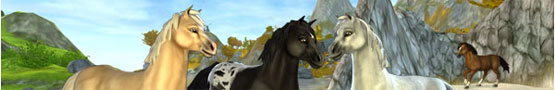 Gry Konne Online - My Favorite Horse Games