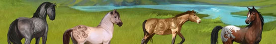 Gry Konne Online - Horse Simulation Games