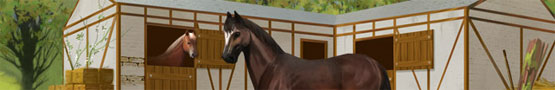 Jeux de chevaux en ligne - Three Horse Breeds Recommended for Beginners