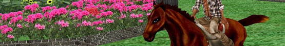 Online Paarden games - Why You Should Play IMVU