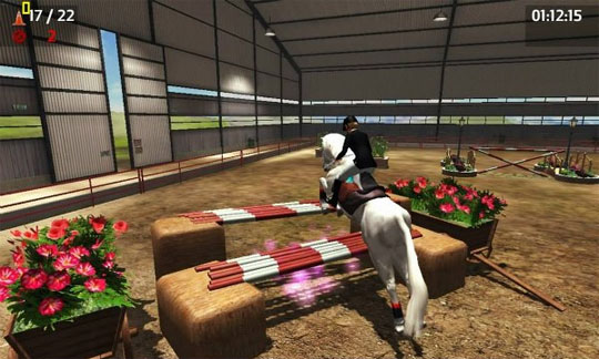Indoor Events in Riding Club Championships