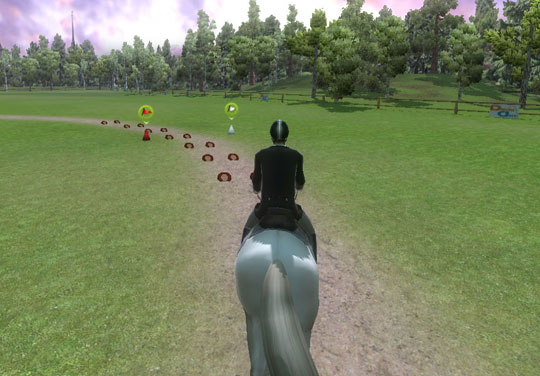 Turning in Ride: Equestrian Simulation