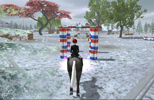 Winter Ride in Riding Club Championships