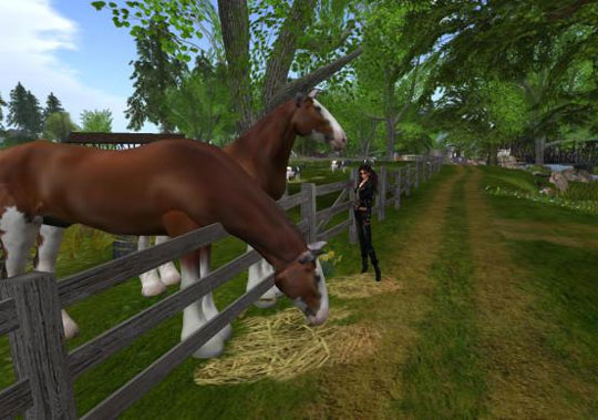 Own a Ranch in Second Life