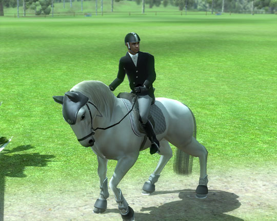 Display of Magnificence in Ride: Equestrian Simulation