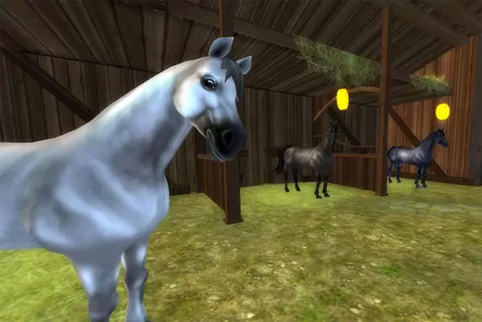 New American Quarter Horses in Star Stable