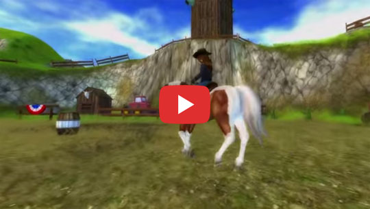 New American Paint Horses in Star Stable