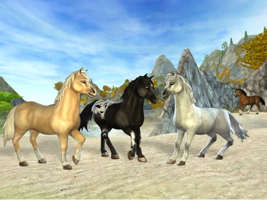 Wild Horses in Star Stable
