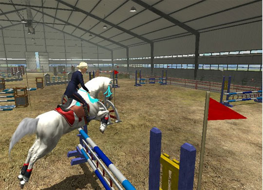 Fantastic Horse and Rider in Riding Club Championships