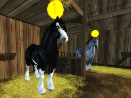 Brand New Shire Horses in Star Stable