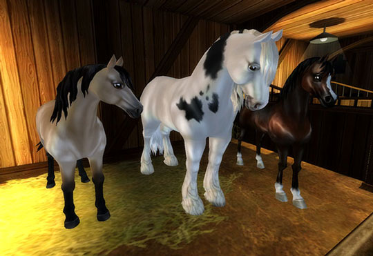 New Additions to Classic Breeds in Star Stable
