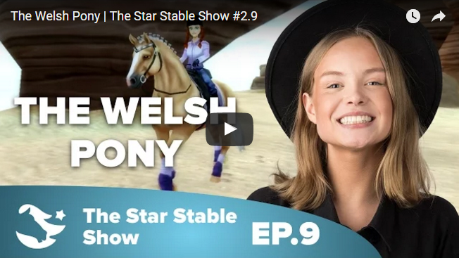 Welsh Ponies are Coming to Star Stable