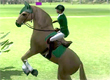 Ride: Equestrian Simulation game