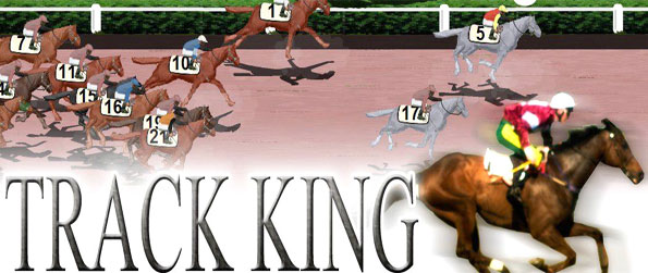 Track King - Manage your own racing stable and prove your the best.