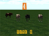 Equestrian Horse Racing level 4