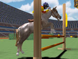 Show Jumping: Jumping over the vaults