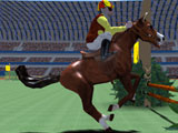 Timing a Jump in Show Jumping